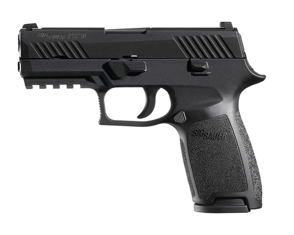 Sig Sauer P320 Carry .45 ACP with Night Sights
